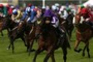 cambridge news published royal ascot not newmarket for wesley ward's hootenanny and sunset...
